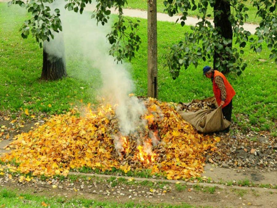 Картинки по запросу чи спалювати листя